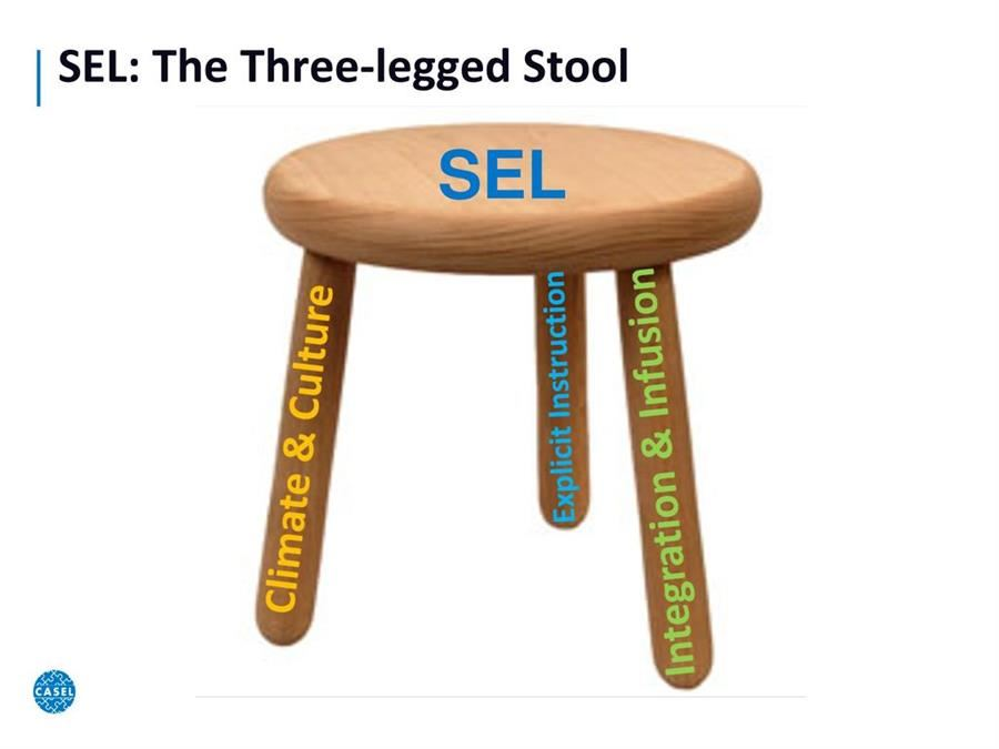SEL: The Three Legged Stool