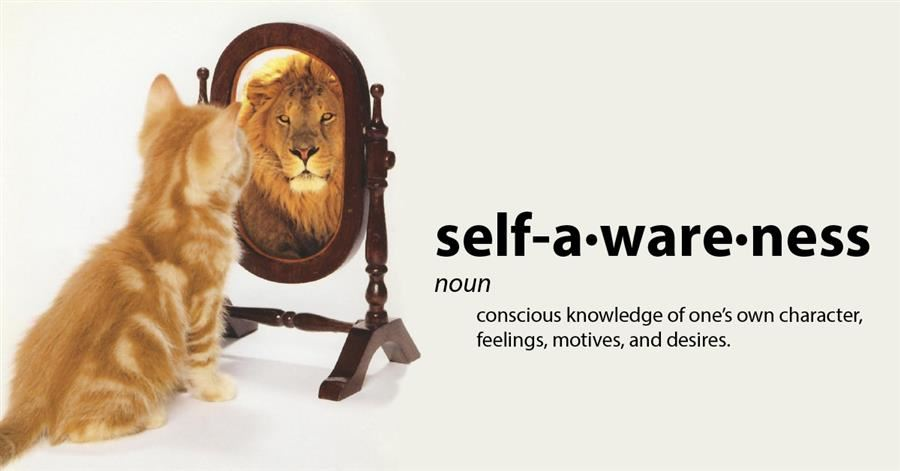 Self Awareness Motivational Poster with Lion